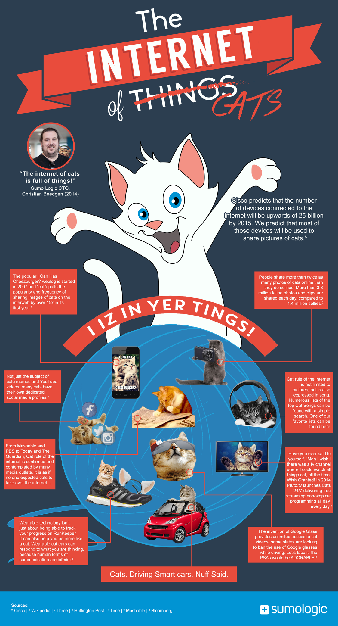 Cat-Infographic-Large