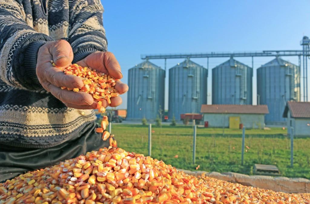 grain-silos-shutterstock_229661359