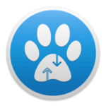 paw http request builder